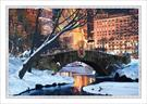 F3749-PPC<br>Snowy Central Park Bridge